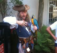 Eric Lavender, Pirate